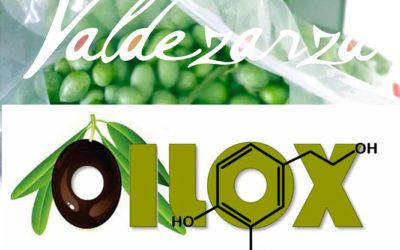 Aceites Valdezarza and the Oilox R&D project