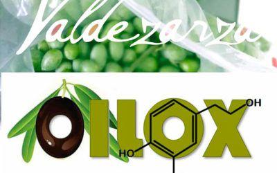 Aceites Valdezarza dentro del proyecto de investigación OILOX