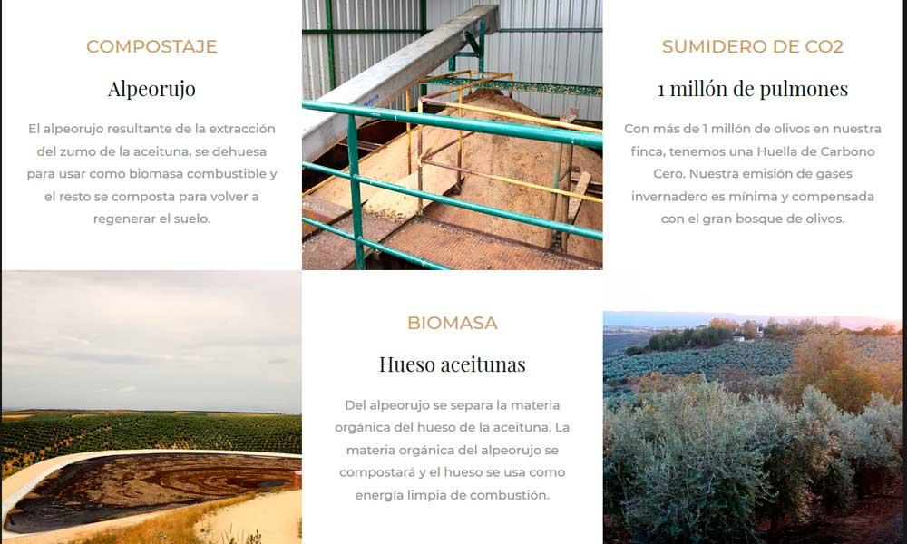 Aceites Valdezarza: Espacio natural y economía circular